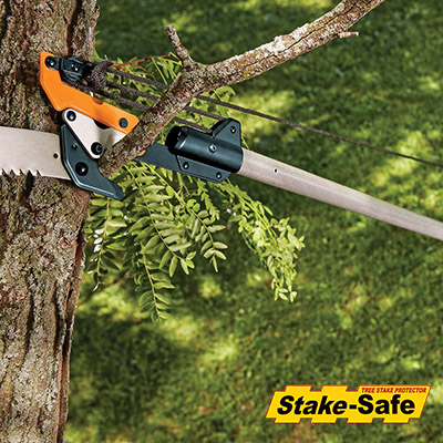 Pruning Upper Branches